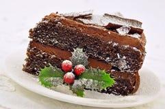 Bereifter Schokoladen-Weihnachtskuchen Stockfotografie