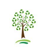 Bereiten Sie Baum auf Lizenzfreie Stockfotografie