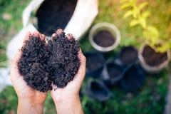 Bereiten Sie Boden für das Pflanzen von Bäumen vor Stockbild