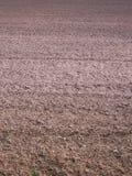 Bereiten Sie Boden vor, bevor Sie pflanzen Stockbilder