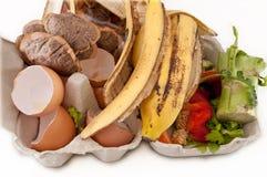 Bereiten Sie für die Kompostierung vor. Lizenzfreies Stockbild