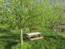 Bereiten Sie für ein Picknick im April vor stockfotos