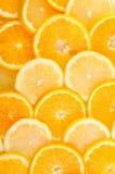 Bereiten Sie für einen Text vor saftige Scheiben der Zitrone und der Orange Stockbild