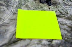 Bereiten Sie Papier auf altem Baum auf Lizenzfreies Stockfoto