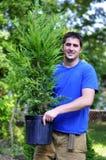 Bereiten Sie vor, um zu pflanzen lizenzfreies stockfoto