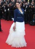 Berenice Bejo Lizenzfreies Stockfoto