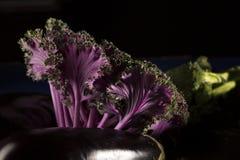Berenjena con col rizada y bróculi asiáticos imagen de archivo