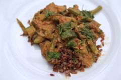 Berenjena del Cymbopogon y curry de la haba verde - vegetariano Fotografía de archivo libre de regalías