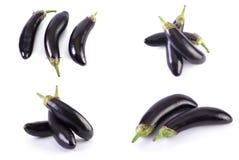 Berenjena en un fondo blanco Las berenjenas son frescas y deliciosas Verduras frescas en un fondo blanco imagen de archivo