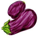 Berenjena púrpura Imagen de archivo libre de regalías
