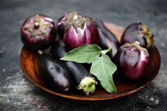 Berenjena púrpura madura Fotografía de archivo