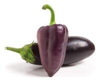 Berenjena y paprikas púrpuras aislados en el fondo blanco Foto de archivo libre de regalías
