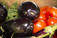 Berenjena y tomates Imagen de archivo libre de regalías
