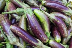 Berenjenas en el mercado. Fotografía de archivo libre de regalías
