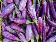 Berenjenas púrpuras de la raya blanca en venta en el mercado fotografía de archivo