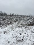 beret μπλε ΚΑΠ παλτών πατέρων πράσινος χειμώνας περιπάτων γιων σακακιών mum κόκκινος χιονίζοντας Στοκ φωτογραφία με δικαίωμα ελεύθερης χρήσης