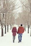 beret μπλε ΚΑΠ παλτών πατέρων πράσινος χειμώνας περιπάτων γιων σακακιών mum κόκκινος χιονίζοντας Στοκ Εικόνες