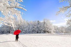 beret μπλε ΚΑΠ παλτών πατέρων πράσινος χειμώνας περιπάτων γιων σακακιών mum κόκκινος χιονίζοντας Στοκ εικόνα με δικαίωμα ελεύθερης χρήσης