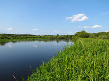 Berezina rzeka Fotografia Royalty Free