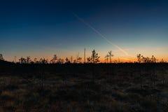 Berezinsky, riserva di biosfera, Bielorussia Autumn Landscape With Ma immagini stock libere da diritti