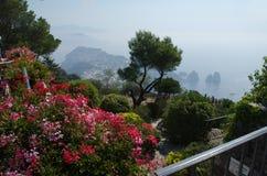 Bergöverkantträdgård Royaltyfri Fotografi