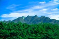 Berg är härliga med frodig vegetation och blå himmel arkivfoto
