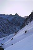 berg över soluppgångvinter Royaltyfri Bild
