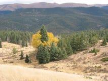 Berg übersehen Lizenzfreie Stockbilder