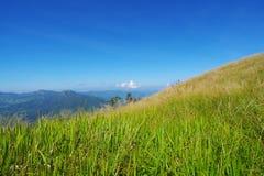 Berg Arkivbild