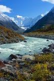 Berg Altai stock afbeeldingen