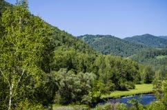 Berg Altai Stockfoto