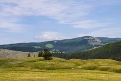 Berg Altai Stockbild