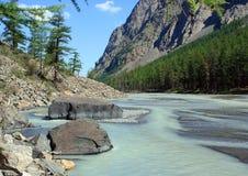 Berg Altai. De rivier Maashej. royalty-vrije stock fotografie