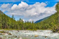 Berg Altai Der Fluss Akkem Russland Stockfoto