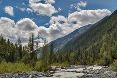 Berg Altai Der Fluss Akkem Russland Lizenzfreie Stockfotos