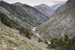 Berg av den sydliga Kirgizistan Arkivfoto