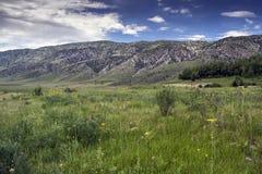 Berg av den sydliga Kirgizistan Royaltyfri Bild