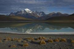 Berg av den Torres del Paine nationalparken i sydliga Chile royaltyfria foton