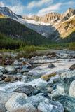 Berg av Italien, fjällängar i Valmalenco Arkivfoto