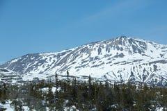 Berg av norden Arkivbilder