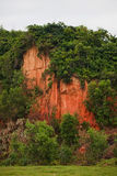 Berg av skogar för röd lera i Vietnam Arkivbild