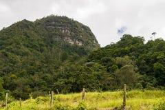 Berg, Bäume und ein bewölkter Himmel gestalten landschaftlich Stockfoto