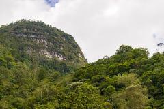 Berg, Bäume und ein bewölkter Himmel gestalten landschaftlich Lizenzfreies Stockbild