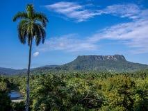 Berg Baracoa för El Yunque Arkivfoto