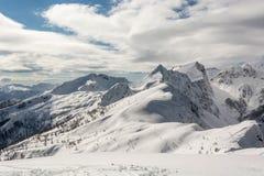 Berg bedeckt im Schnee mit sichtbarer Baumgrenze Stockbilder