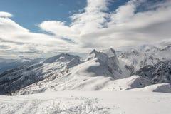 Berg bedeckt im Schnee mit sichtbarer Baumgrenze Stockfotos