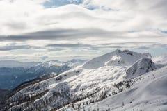 Berg bedeckt im Schnee mit sichtbarer Baumgrenze Stockfotografie