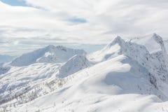 Berg bedeckt im Schnee mit sichtbarer Baumgrenze Stockfoto