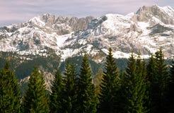 Berg in Beierse Alpen Stock Afbeelding