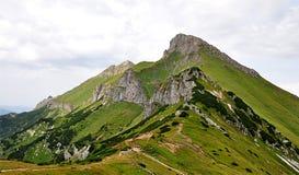 Berg Belianske Tatry, Slovakien, Europa Royaltyfri Bild